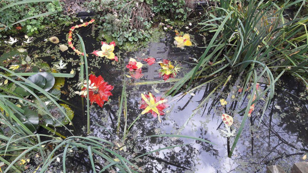 mare du jardin partagé