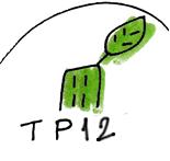 Transition 12